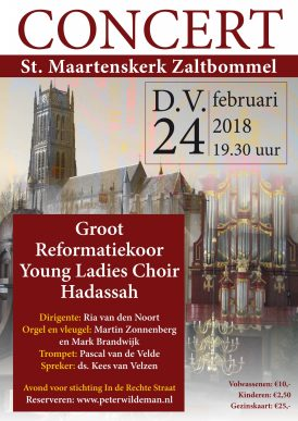 Concert Sint Maartenskerk Zaltbommel